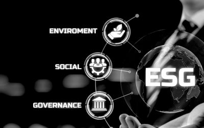 Navigating the complexities of ESG investing